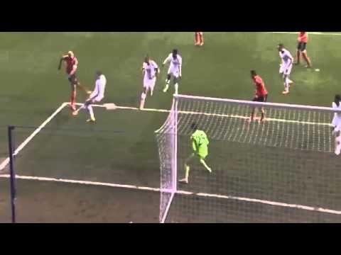 Luisão Second Goal ~ Tottenham Hotspur vs Benfica 1-3 ~ Europa League ~ 13-03-2014