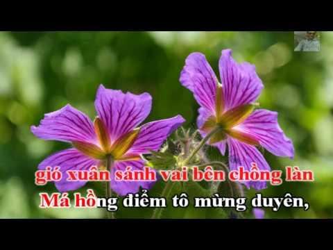 KARAOKE HD - Chiều Buồn Nghe Vọng Kim Lang