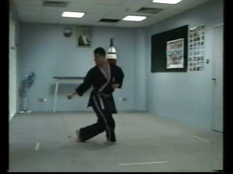 Okinawa-Te   Karate-do ninth video