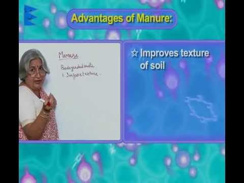 CBSE class 8-Science-Chapter 1-Crop Production and Management-Manure