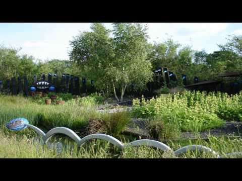 WWt London wetland centre Paddington London