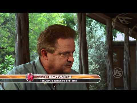 Bucks of Tecomate 2008 - Hunting Hot Seat 201 - Hunting Public Land