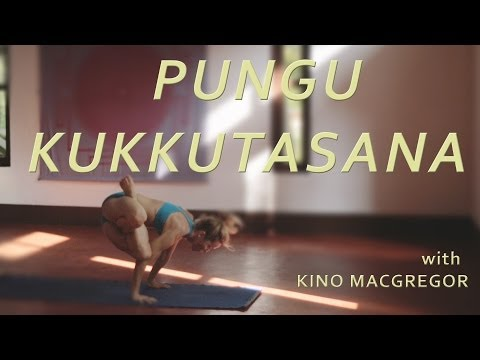 Pungu Kukkutasana with Kino Macgregor (Fourth Series Ashtanga Yoga Demonstration)