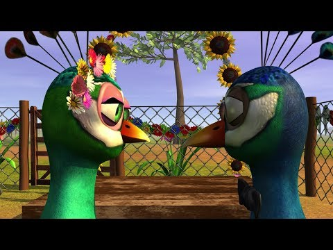 El Pavo y la Pava - Riki Maravilla