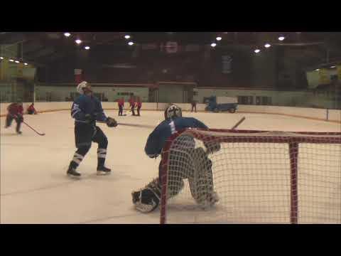 Když hokejisti blbnou...:D