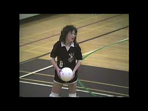 NCCS - Saranac JV Volleyball 2-13-88
