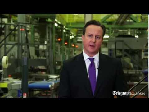 David Cameron's New Year message