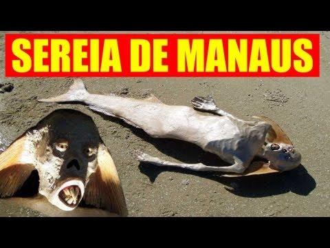 SEREIA DE MANAUS (real mermaid??)