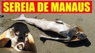 SEREIA DE MANAUS (real mermaid??) view on youtube.com tube online.