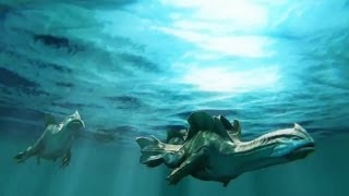 Monster Hunter 3 Ultimate Opening Cinematic (HD)
