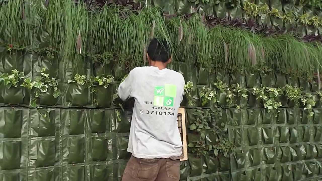 Como hacer un jardin vertical lima peru youtube for Como hacer un jardin vertical