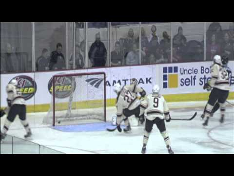 Game Highlights Feb. 15 Chicago Wolves vs Milwaukee Admirals