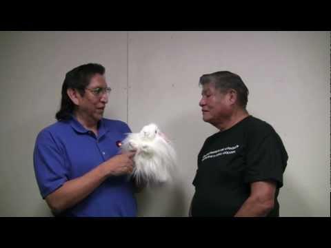 Animals Lesson 6_15_09.mov