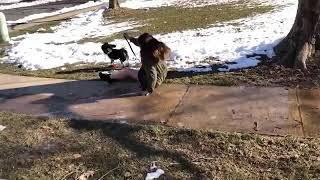 Caerse en la nieve