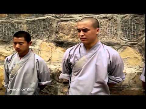 Khám phá tuyệt kỹ võ công Thiếu Lâm Tự