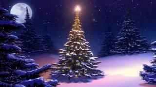 Mutari - Feliz Natal e um excelente 2019!
