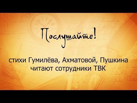 """""""Послушайте!"""" стихи Гумилева, Ахматовой, Пушкина читают сотрудники ТВК"""