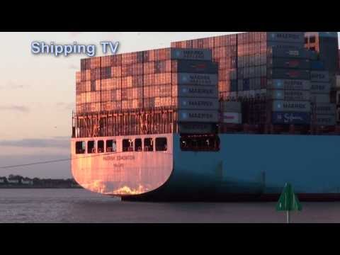 CSCL Long Beach, Maersk Edmonton, MSC Katrina; 22nd November 2013