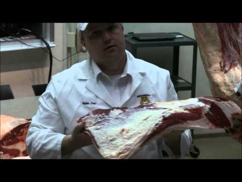 BEEF U 2014 Cuts of Beef Part 5 Foreshank & Plate