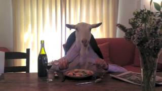 Fine Dining with a Sophisticated Goat