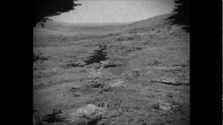 Leaked Clear Video From NASA Footage Exposing Life On Mars