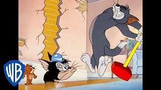 Tom a Jerry - zajať Jerryho