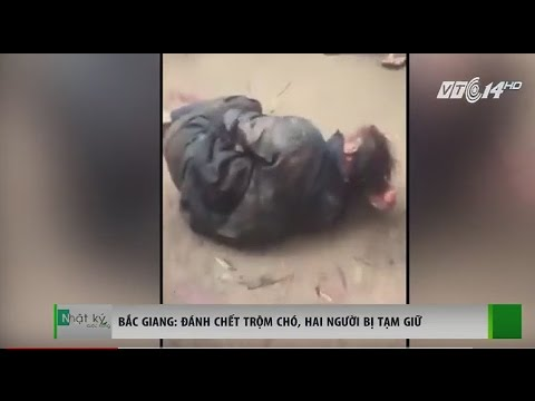 (VTC14)_Bắc Giang: Đánh chết trộm chó, hai người bị tạm giữ