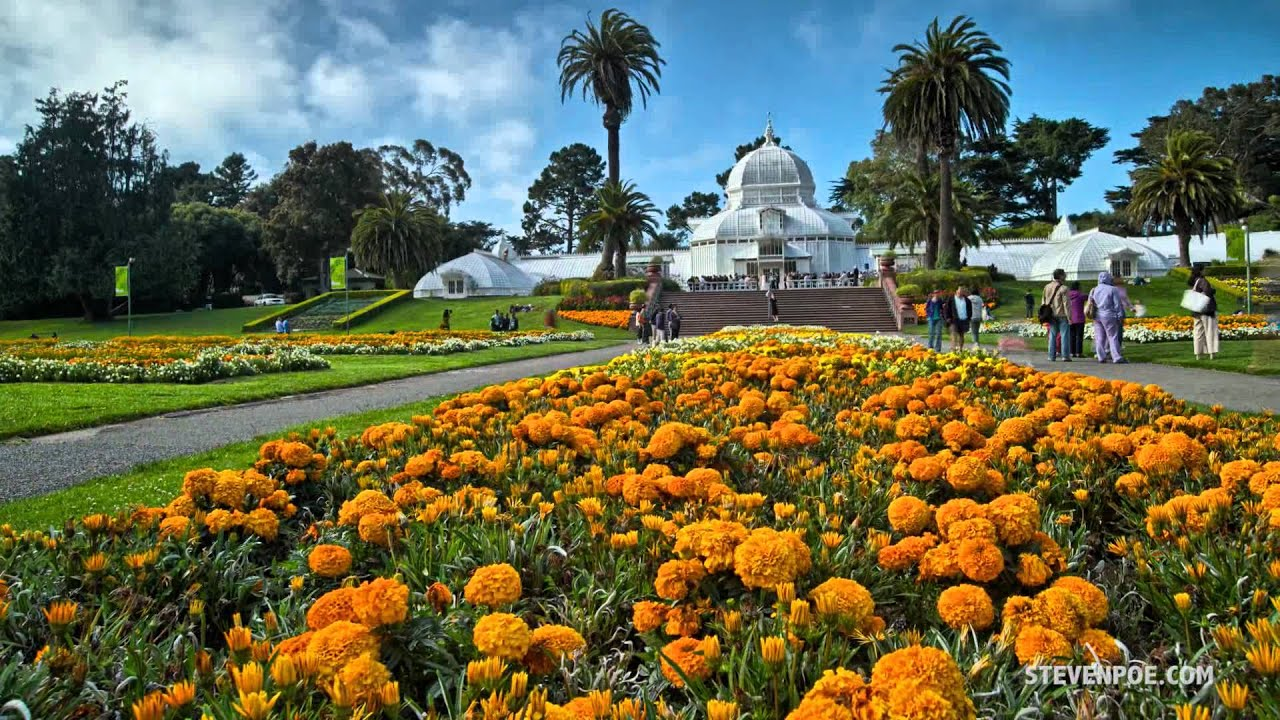 Strybing Arboretum Botanical Gardens San Francisco Tlcasf12072c Youtube