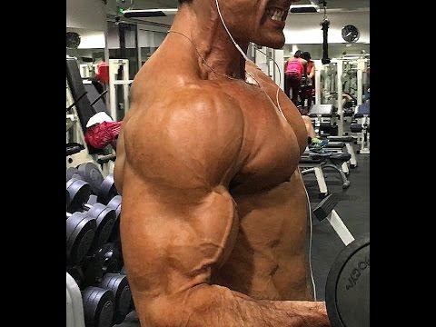 Mon Top 5 des exercices pour Biceps