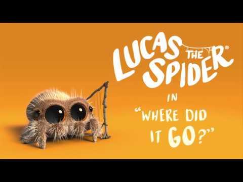Pavouk Lucas - Kam to zmizelo?