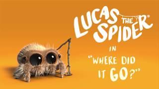 Pavúk Lucas - Kam to zmizlo?