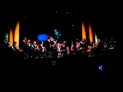 West Europe Orchestra - 7th Art Magic Concert - 007 Theme