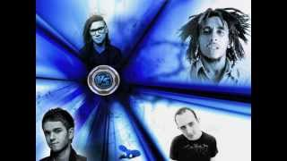 Skrillex, Deadmau5, W Gartner, Bob Marley, Zedd Breakin