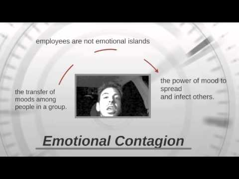 Emotional Contagion: Providing personal and professional vitality to corporate vice presidents.