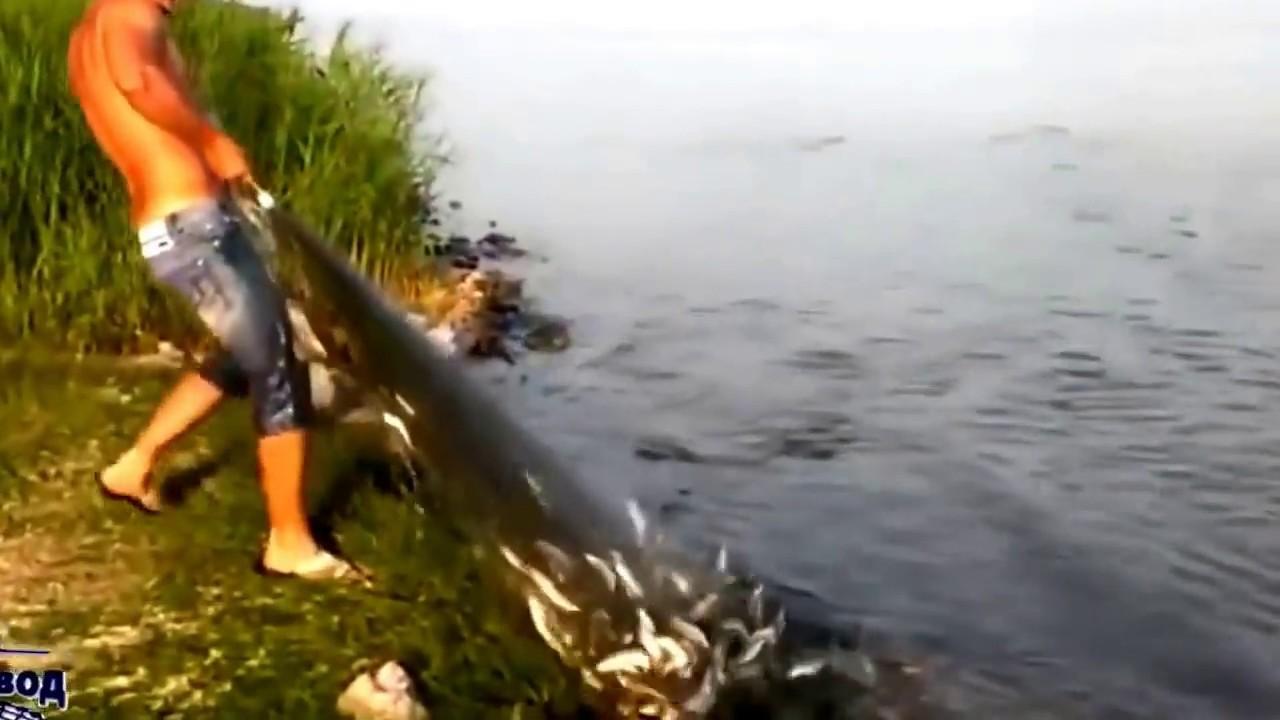 рыбалка видеоролики сетью