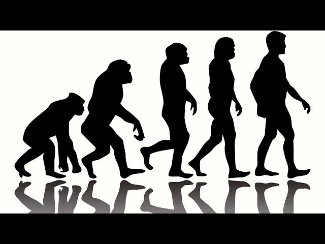 10 Weird Facts about Human Evolution
