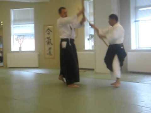 aikido suzuki odense 2009 003