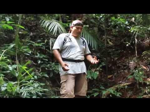 Moh ke Perak - Fam Trip Eco Adventure Royal Belum & Gopeng 2013