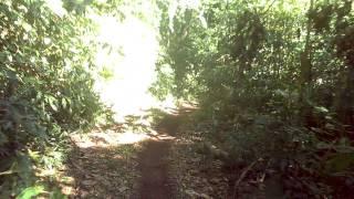 Trilheiros Do Formigao - Trilha Do Bugio - Parte 2