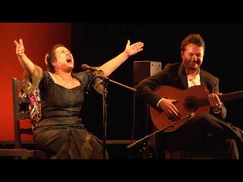 Encarna Anillo, une jeune prodige sur la scène d'Arte Flamenco