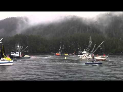 Sitka Herring 2011. First Opener