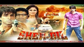 SHERDIL Full Length Action Hindi Movie