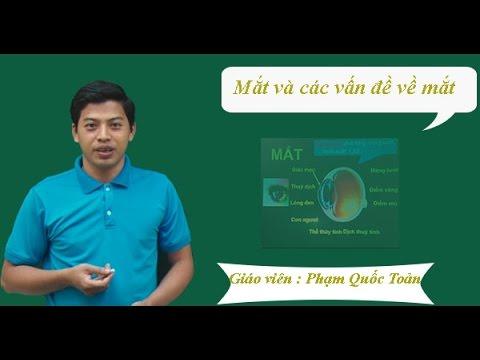 Mắt và các tật về mắt - Vật lý lớp 11 - Thầy Phạm Quốc Toản