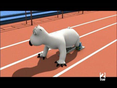 Medveď Bernard - Beh