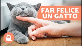 gatti base