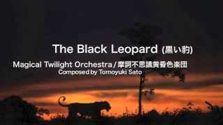 The Black Leopard / 