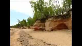 390 miljonus gadu vecas fosilijas