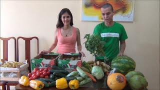 Comida para uma semana em uma dieta crua view on youtube.com tube online.