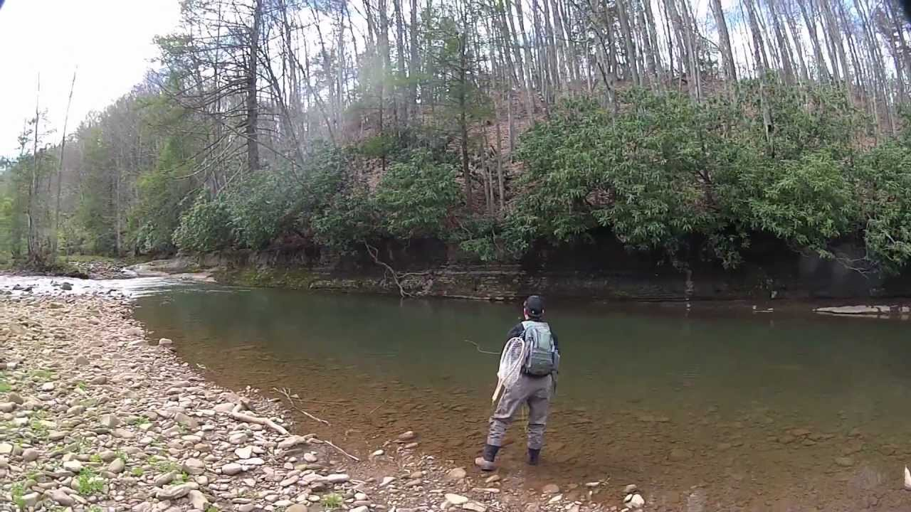 fly fishing in west virginia youtube