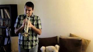 Como tocar la trompeta. Los tonos largos